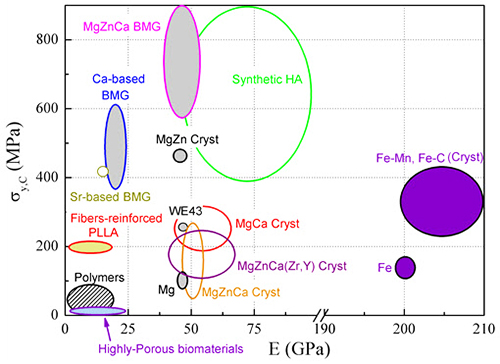 biodegradation properties of magnesium alloys :: total materia article, Skeleton